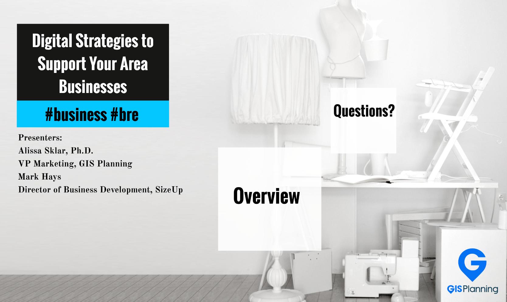 Digital_Strategies_Area_Businesses___Prezi